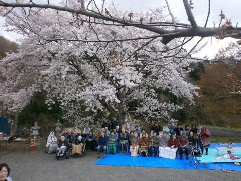 お花見 【ケアビレッジ塩竈】