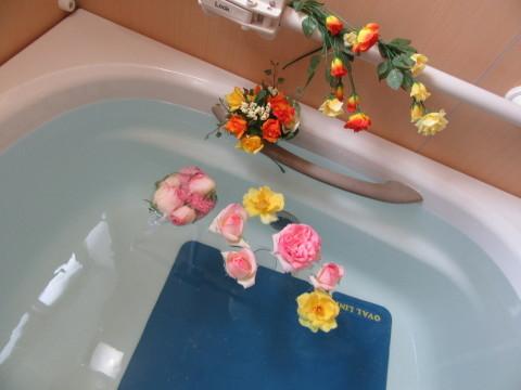 薔薇風呂 七ツの森デイサービス